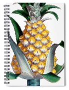 Pineapple, 1789 Spiral Notebook