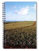 Pineapple Fields Spiral Notebook