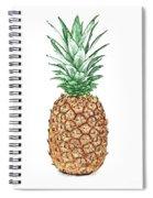 Pineapple Pencil Spiral Notebook
