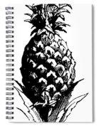 Pineapple Print Spiral Notebook