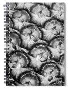 Pineapple Skin - Bw Spiral Notebook