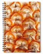 Pineapple Skin Texture Spiral Notebook
