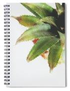 Pineapple Top 2- Art By Linda Woods Spiral Notebook