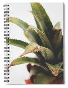Pineapple Top- Art By Linda Woods Spiral Notebook