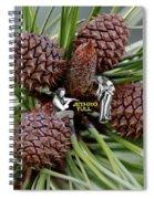 Pinecone Rock 1 Spiral Notebook