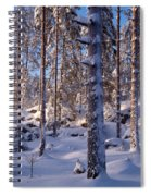 Pines Spiral Notebook