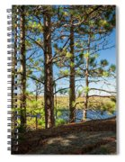 Pines On Sunny Cliff Spiral Notebook