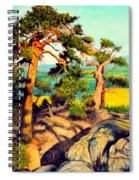 Pines On The Rocks Spiral Notebook