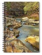 Piney Creek Ravine Revisited 1 Spiral Notebook