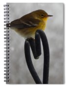 Pining For You Spiral Notebook
