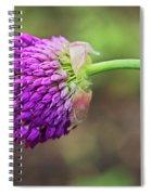 Pink Allium Spiral Notebook
