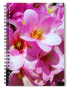 Pink And Beauty Spiral Notebook