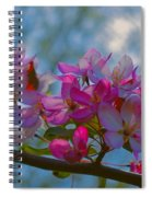 Pink And Blue Spiral Notebook