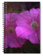 Pink And Gold 6156 Dp_2 Spiral Notebook