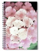 Pink And Green Blossoms Spiral Notebook