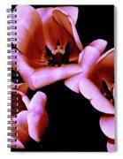 Pink And Orange Tulips Spiral Notebook