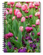 Pink And Purple Tulips At The Spring Floriade Festival Spiral Notebook