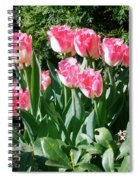 Pink And White Fringed Tulips Spiral Notebook