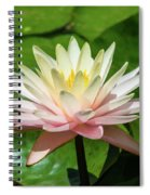 Pink And White Water Lily Spiral Notebook