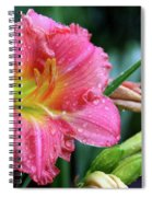 Pink And Yellow Lily After Rain Spiral Notebook