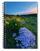 Pink And Yellow Sunset Spiral Notebook
