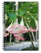 Pink Angels Spiral Notebook