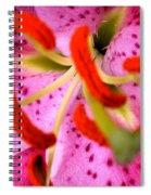 Pink Aroma Spiral Notebook
