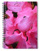 Pink Azalea Drama Spiral Notebook