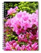 Pink Azalea Flowers Landscape 11 Art Prints Canvas Artwork Framed Art Cards Spiral Notebook