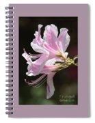 Pink Azalea Macro Spiral Notebook