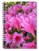 Pink Azaleas II Spiral Notebook