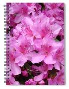 Pink Azaleas Summer Garden 6 Azalea Flowers Giclee Art Prints Baslee Troutman Spiral Notebook