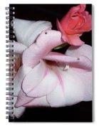 Pink Beauty Spiral Notebook