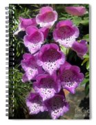 Pink Bell Flowers, Close-up. Foxglove 02 Spiral Notebook