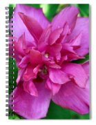 Pink Bloom Spiral Notebook