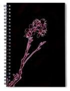Pink Blooming Branch In Prayer Spiral Notebook