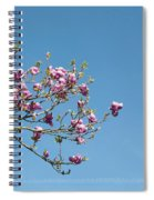 Pink Blossom And Glasshouse Spiral Notebook