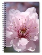Pink Blossom Nature Art Prints 34 Tree Blossoms Spring Nature Art Spiral Notebook