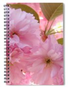 Pink Blossoms Art Prints Spring Tree Blossoms Baslee Troutman Spiral Notebook