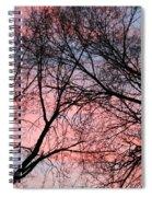 Pink Blue Sky Spiral Notebook
