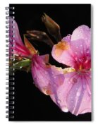 Pink Blush Cranesbill Spiral Notebook