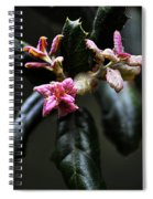 Pink Bud Spiral Notebook