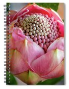 Pink Bud Waratah Spiral Notebook