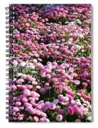 Pink Button Pom Flowers Spiral Notebook