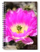 Pink Cactus Flower Spiral Notebook