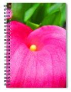 Pink Calla Lily Macro Flower Art Print Lilies Baslee Troutman Spiral Notebook