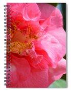 Pink Camelia Closeup Spiral Notebook