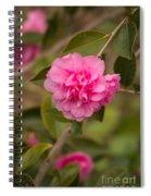 Pink Camellia 2 Spiral Notebook
