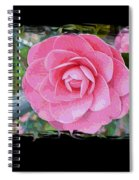 Pink Camellias With Fence And Framing Spiral Notebook
