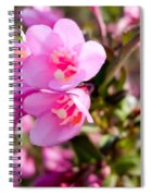 Pink Cardinal Bush Flowers Spiral Notebook